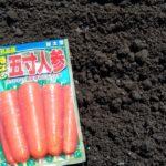 4月の家庭菜園。ニンジンの種まきと【百戦錬磨お婆ちゃん登場】で、少し早いジャガイモの芽かきと追肥